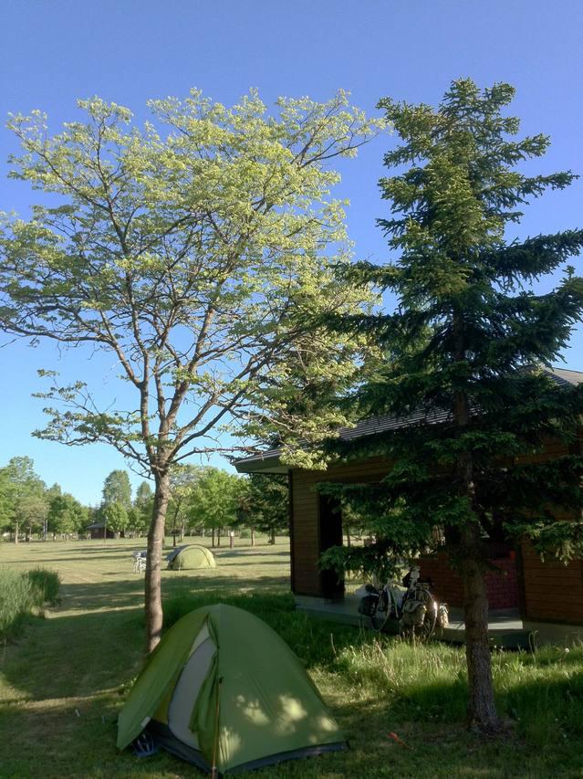 雲ひとつ無いピンネシリオートキャンプ場。キャンパーは僕ともう一組だけ。